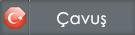 cavus.png